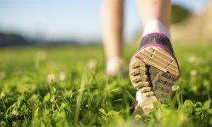 Counselling Lancaster - Walking in Field